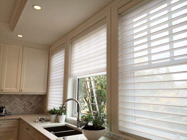 hunter shades window shadings windows top blinds in for inspirations windowdzn from be on silhouettes ordered pinterest nantucket images arch douglas can best silhouette winnipeg