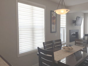 Concept Dual Roller Shades Sheila S Window Toppers And